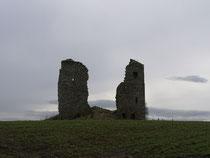 Federate Castle