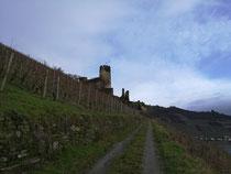 Burgruine Fürstenberg