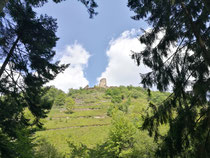 Burg Winneburg