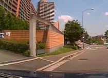 歩道横切り 交通安全 事故防止 安全運転管理 運行管理