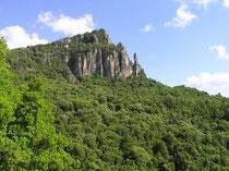 Seui, La foresta di Montarbo