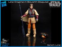 Leia Organa in Boushh Disguise