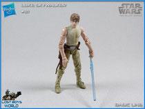 Luke Skywalker Dagobah Training
