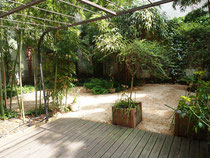 Apaprtement avec jardin 75016 Maisons Parisiennes Immobilier de charme