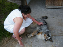 """Roxy spielt """"toter Hund"""" in der größten Hitze"""