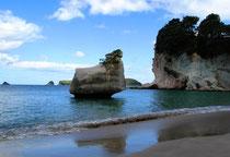 Bild: Hahei, Neuseeland