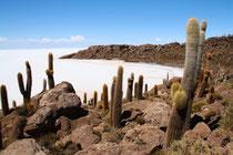 Bild: Salar de Uyuni