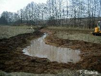 Will noch ein Teich werden
