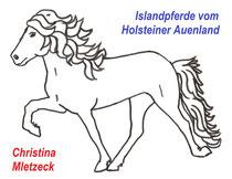 Logo Islandpferde vom Holsteiner Auenland Christina Mletzeck