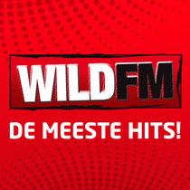 interview eerste werkdag Radio Wild fm Hitradio Gonnie Klein Rouweler Etiquette-specialist