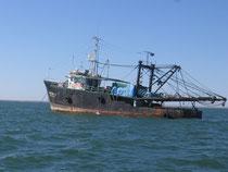 La pêche industrielle menace les artisans pêcheurs