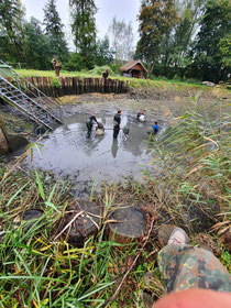 Ablassen Teich 2 (über 1.200 stk. K2 und K3)