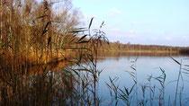 Idyllische Ruhe am Wolfsmeer in Moormerland - Veenhusen, nahe Leer im südlichen Ostfriesland