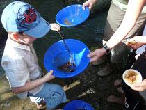 Goldwaschen und dabei Flusskrebse entdecken