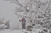 大きな樹氷とSakura。なんかスキーヤーみたいだけどw