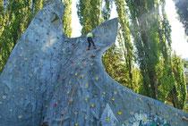 Mur de grimpe