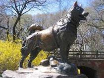 Parque Central de Nueva York.