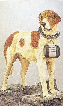 Perros famosos que nunca se han de olvidar Image