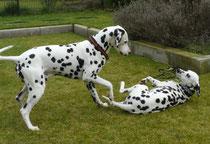 Ole und Fanny