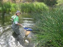 Waterwatch coordinator Julia Vanderoord