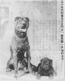 Iron Monkey - 1950