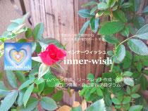 【inner-wish】インナーウィッシュ