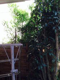 庭師モード