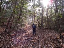 広峰への山道