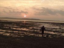 干上がった浜の朝