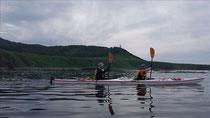 知床岬を漕ぐ