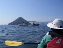 海に浮かぶ富士