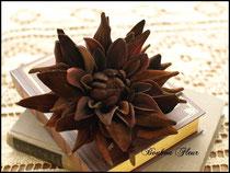 マレーナダリア*チョコブラウン