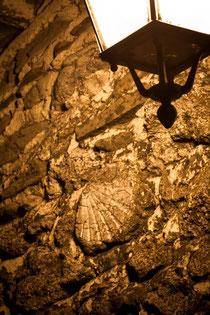 Le géologue commence souvent par interroger les murs