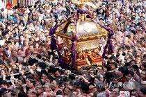 2013年5月12日「神田祭」宮入渡御