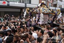 三社祭(平成25年5月19日) 三之宮:西七番【浅草中】