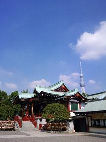 ご本殿後ろには東京スカイツリー。