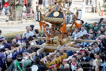 建国祭(紀元祭)神輿パレード:写真追加更新!