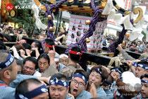 2013「三社祭」南十三番〈浅草西〉本社一之宮神輿渡御