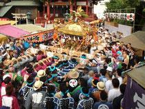 羽田神社本社大神輿