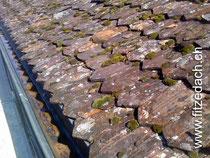 Fitze Dach AG der Dachdecker  bietet Dachrenovationen an. Foto: Biberschanzziegeldach mit Moos und zum Teil starken Frostschäden.