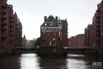 www.marcs-fotografieseite.de, Marcs Fotografie, Marc Eggelhöfer, Urlaub, Hamburg, Hafen, Hafenrundfahrt, Planten und Blomen, Gewächshaus, Schiff, Musical, Tarzan