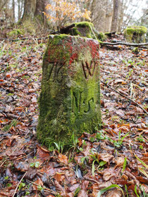 Grenze Hochmössingen / Weiden