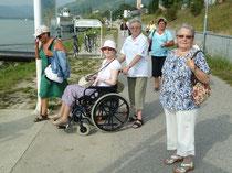 Die nächste Tagesfahrt führt am 12. September zum Neusiedlersee. Information unter 0664/8631107 oder unter 0664/8631107 oder betreutes-reisen@krems.n.roteskreuz.at. Foto zVg