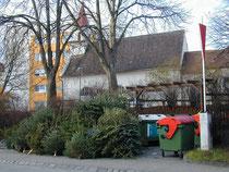 Kremser Bürger können ihre ausgedienten abgeräumten Christbäume bei den öffentlichen Umweltinseln im Stadtgebiet entsorgen. Foto:zVg