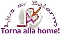 """Icona """"Torna alla Home"""""""