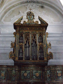 Organo adespota
