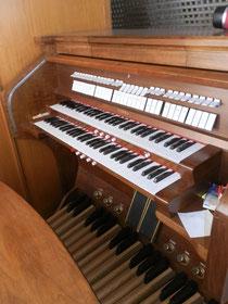 Organo Leorin, 1993