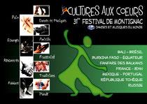AFFICHE DU FESTIVAL 2011