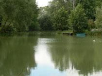 L'étang de la propriété