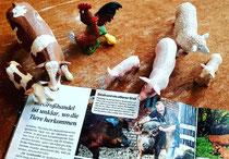🎉2020 heißt es ab morgen🎉 Wir sagen DANKE an Euch-werte Kundschaft die ihr uns wieder unter die 500 besten Metzger Deutschland im #feinschmecker gebracht habt und die ihr unsere #fleischkultur schätzt😍 an unsere Mädels und Jungs in der Fleischerei die jeden Tag volle Kanne Gas geben und an unsere Erzeuger die Wert auf gesunde, artgerechte Haltung legen! #esgehtsoweiterwiebisher #handgemachtelebensmittel #immerneueideen #echtemenschenzumanfassenzndreden 😘kommt gut ins neue Jahrzehnt🎉🎉